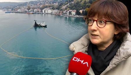 Boğaz'da balıkçı tekneleri tartışması... Prof. Dr. Saadet Karakulak: Kıyısal habitatların korunması lazım