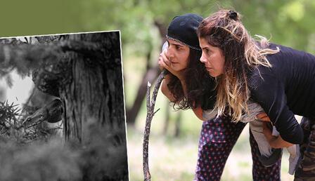 Tunceli'de vatandaşlara engerek yılanı uyarısı