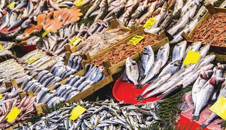 Su ürünleri ihracatı yüzde 169 arttı