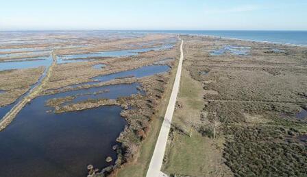Kızılırmak Deltası'nda zirai tarım ilacı tehdidi