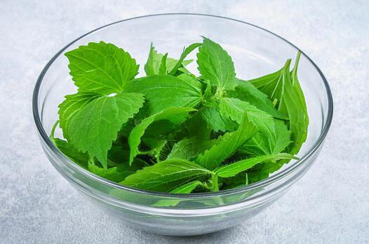 Isırgan otu salatası tarifi