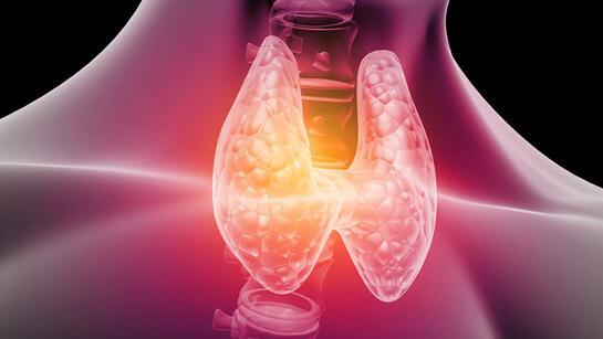 Hipertiroidi nedir, belirtileri nelerdir? İşte hipertiroidi tedavisi hakkında merak edilenler