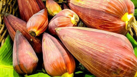 Muz çiçeği nasıl yenir, faydaları nelerdir? İşte süper gıda muz çiçeği hakkında bilgiler