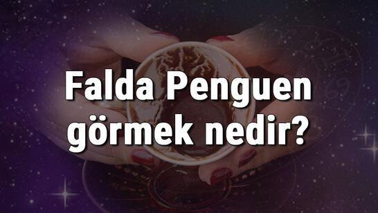 Falda Penguen görmek nedir? Kahve falında penguen görmenin anlamı