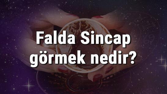 Falda Sincap görmek nedir? Kahve falında sincap görmenin anlamı