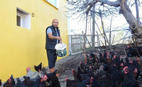 Hobi olarak başladı, yumurtadan ayda 25 bin lira kazanıyor