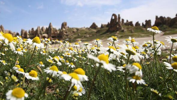 Kapadokya çiçek açtı