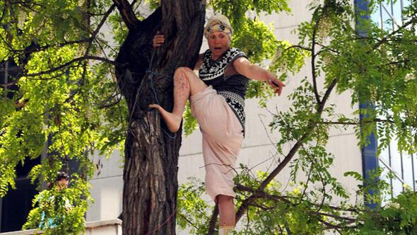 Kalabalıktan korkup çıktığı ağaçtan düştü