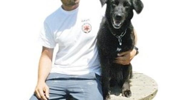 Sokak köpeği Kömür'den uluslararası başarı