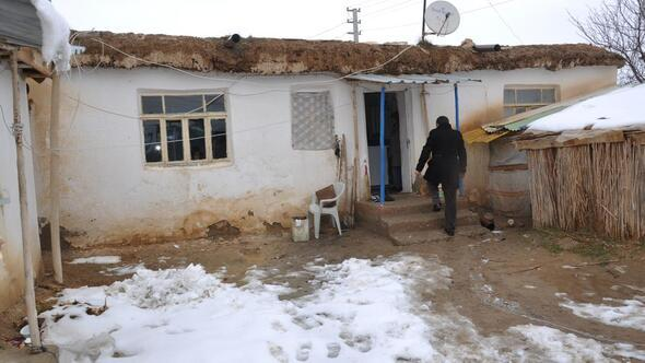 Ulu çınarlara ikinci baharında devlet sahip çıkıyor