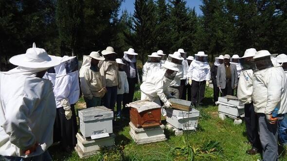 Arıcılar Uygulamalı Eğitim Sonunda Sertifikalarını Aldı