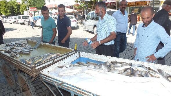 Balıklar Tezgâhlardaki Yerini Aldı