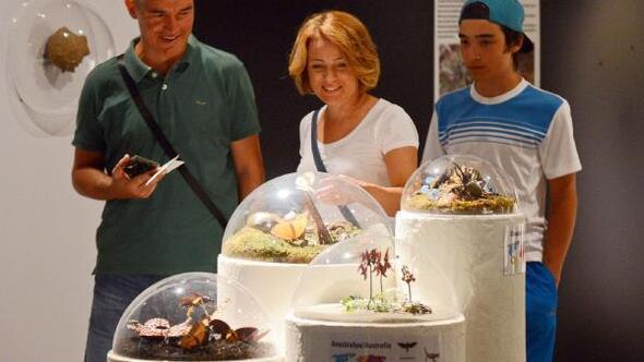 İnanılmaz Böcekler sergisi Expo 2016da