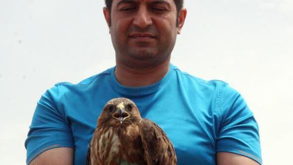 Şanlıurfada tedavi edilen kuşlar doğaya salındı