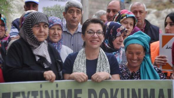 Yırcada üreticilerin Zeytinime dokunma protestosu