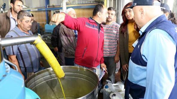 Zabıtadan zeytinyağı fabrikalarına denetim