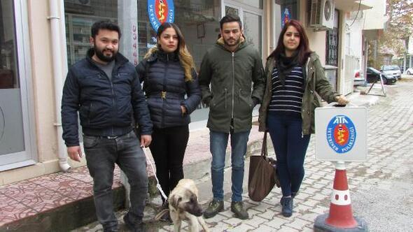 Öğrenciler, yolda buldukları bitkin köpeği tedavi ettirdi