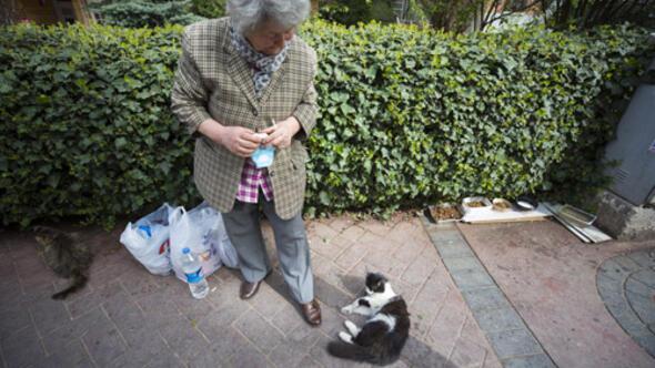 Kedilerin Azime ninesi