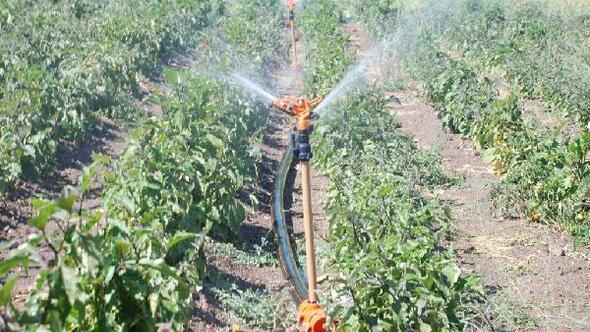 Bölgesel tarıma yön verecek kararlar alındı