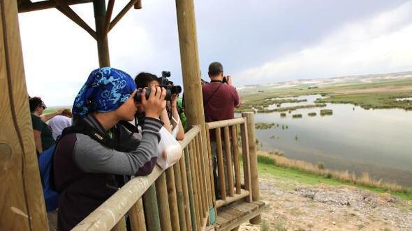 Balıkdamında kuş gözlemi