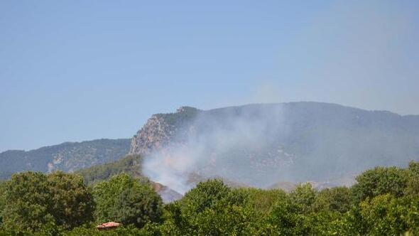 Muğlada yerleşim yeri yakınında orman yangını (2)