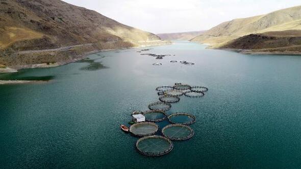Vanda baraj gölünde Avrupa standartlarında alabalık üretimi