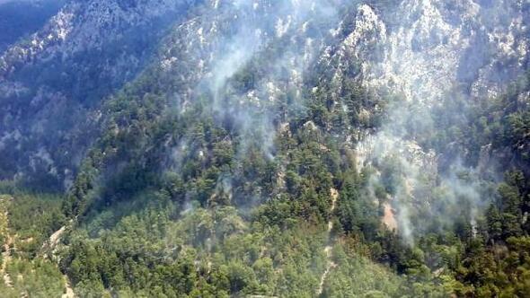 Köyceğizde orman yangını