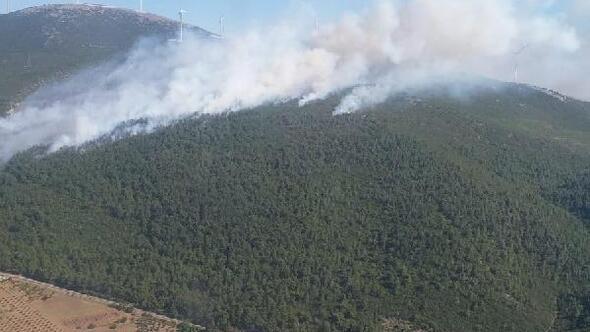 Manisa'da orman yangını/ Ek fotoğraf