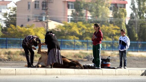 Sokakta kurban kesene para cezası