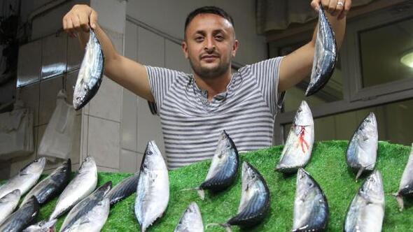 Zonguldakta balık tezgahta el yakıyor