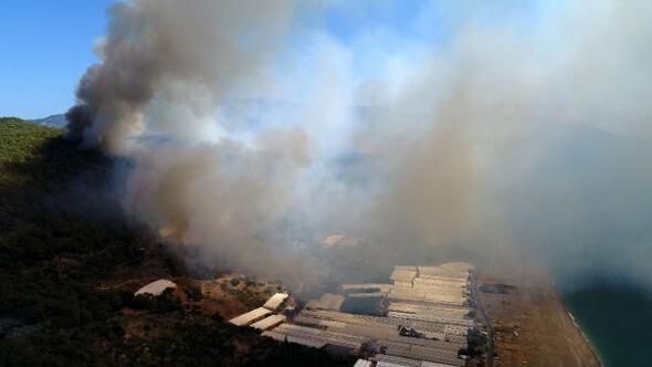 Antalya Kumlucada orman yangını (3)