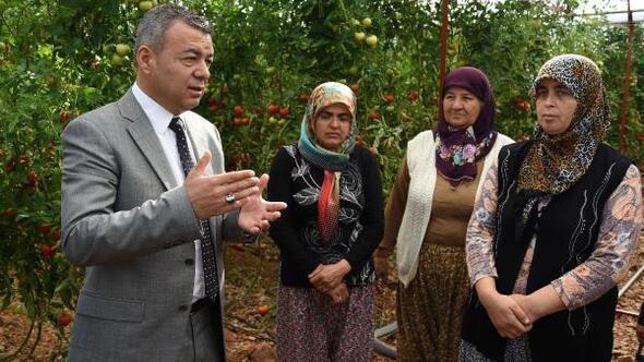 Antalya iyi tarım yapıyor