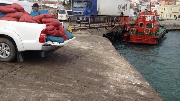 Geliboluda 2,5 ton kum midyesi ve 400 kilo deniz patlıcanı ele geçirildi