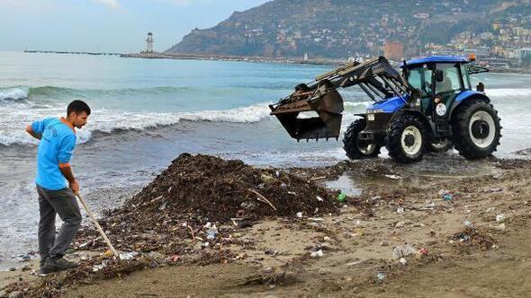 Alanya Belediyesinden sahil temizliği