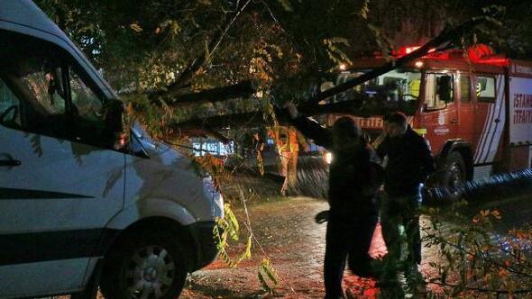 Ağaç, fırtınada minibüsün üzerine devrildi