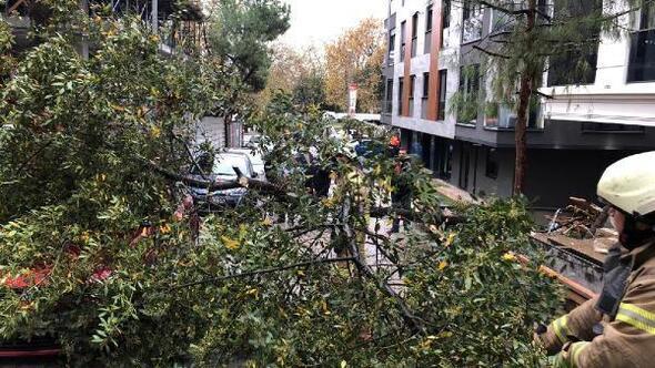 Ağaç, fırtınada aracın üzerine devrildi