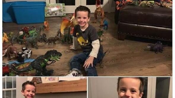 Dinozor koleksiyonunu kaybeden çocuğa oyuncak desteği