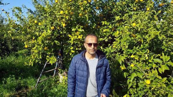Dalamandaki portakal ve limon üreticisi destek bekliyor