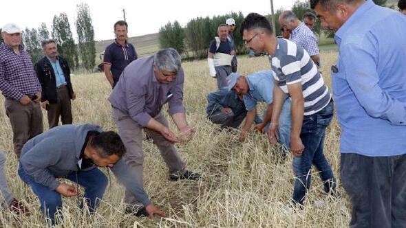 Yozgat Ziraat Odası Başkanı: Yozgat afet bölgesi ilan edilsin