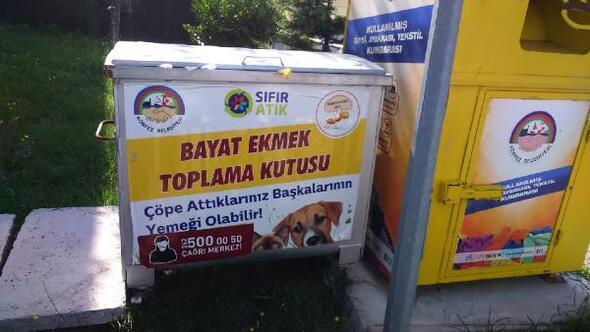 Bayat ekmekler sokak hayvanlarını besleyecek
