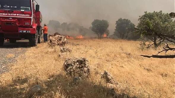 Mardinde Süryanilerin yaşadığı köylere yakın dağda yangın
