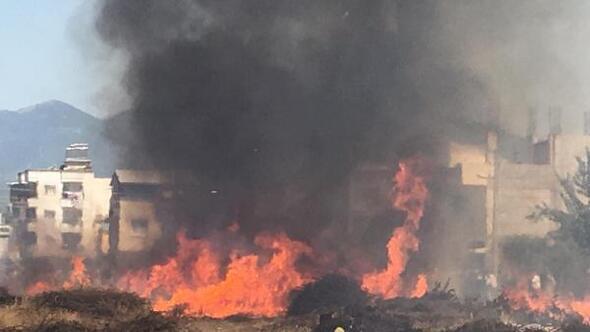 3 hayvan damı ve çalılıklar çıkan yangında küle döndü
