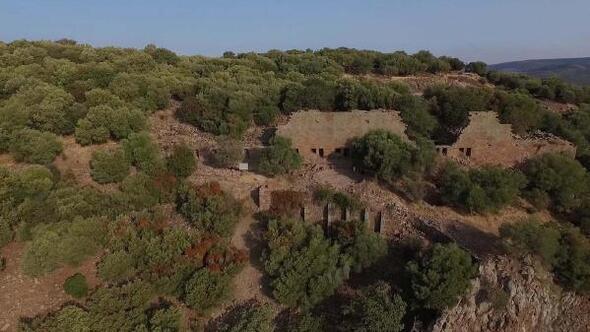 Aigaide 1900 yıllık hayvan kemikleri bulundu