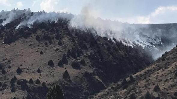 Sarıkamışta orman yangını