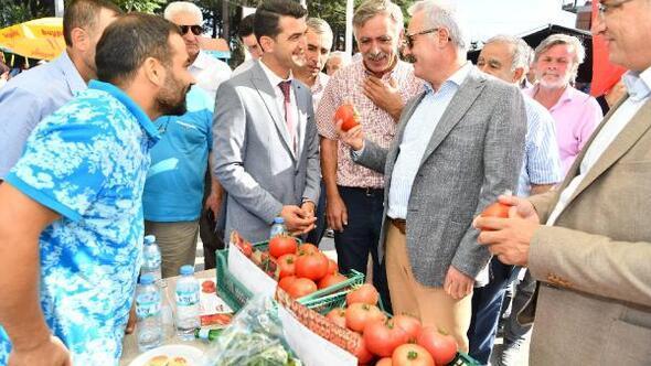 Deregümünde domates ve karanfil festivali