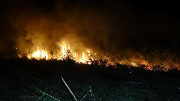 Edremitte sazlık alanda yangın
