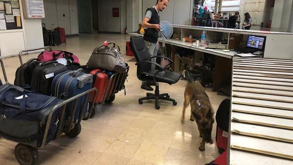 Dedektör köpekler AŞTİ'yi taradı