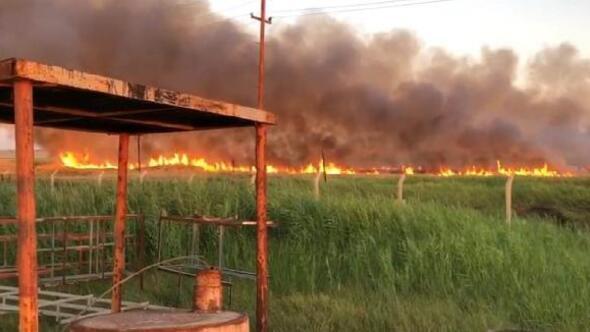 Sınırda çıkan yangın, petrol kuyularına sıçramadan kontrol altına alındı