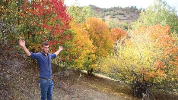 Oltuda kartpostallık sonbahar manzarası