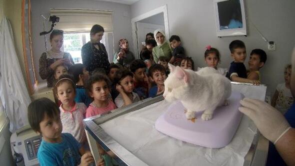 Miniklerden veteriner kliniğine ziyaret